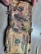 Обмін старих доларів, євро, швейцарські франки
