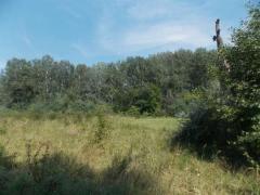 Продам свой участок расположенный в с. Кышеньки, Кобелякского р